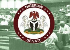 Hate Speech Law: Senate Sues For Patience Among Nigerians