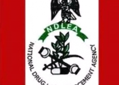 NDLEA Recovers Drugged Cakes, Cocaine in Plateau, Enugu Eateries